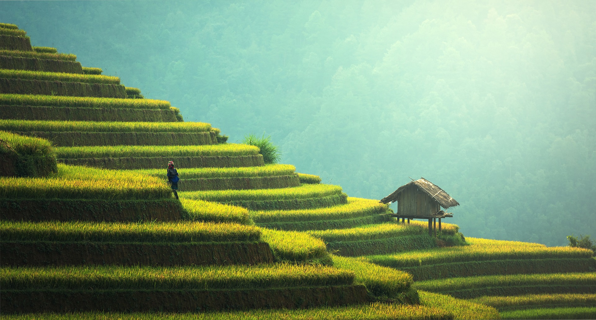 A view of a hillside in Bali